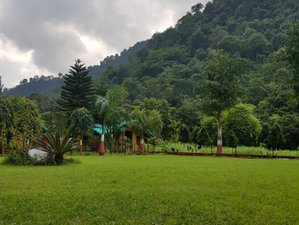 5 Day 'Disconnect to Reconnect' Nature Hiking Yoga Retreat in Rishikesh