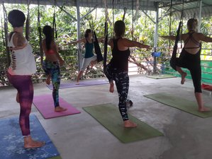 28 Days 200 Hours Hatha Yoga Teacher Training in Siem Reap, Cambodia