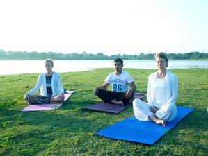 5 Tage Safari Yoga Urlaub Sri Lanka