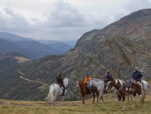 8 Day Gastronomic and Horseback Riding Holiday in Picos de Europa, Cantabria