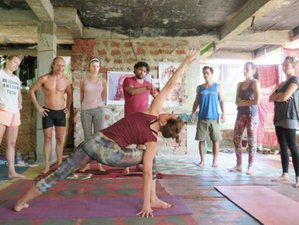 28 Days Yoga Teacher Training in Dharamsala, India