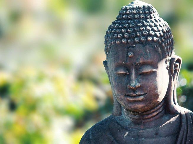 6 Days Raw Food Holistic Healing Detox, Meditation, and Yoga Retreat California, USA