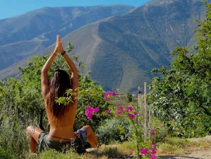 30 Days 200Hr Elemental Yoga TTC and Pregnancy Yoga TTC in Spain