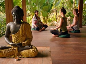 10 Day Wellness and Yoga Tour: Immerse Yourself in the Unique Culture and Beach of Bali, Indonesia
