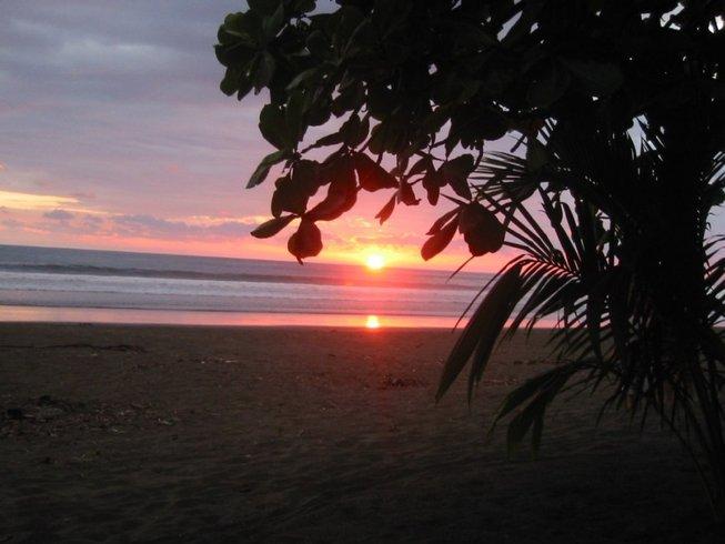 5 días retiro de meditación y yoga en Playa Matapalo, Costa Rica