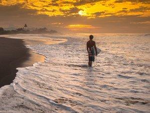 2 Days Genuine Surf Camp in Seminyak, Bali