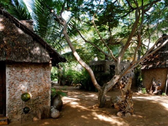 4-Daagse Yoga Retraite op Lamu Eiland, Kenia