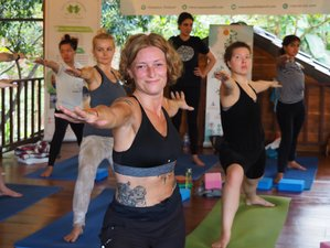 "22 Day ""Strong Foundational"" 200 Hour Hatha and Ashtanga YTT in Mae Wang, Chiang Mai"