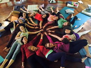 16 Days 200-Hour Yoga Teacher Training in Miramar, Central Pacific Coast, Costa Rica