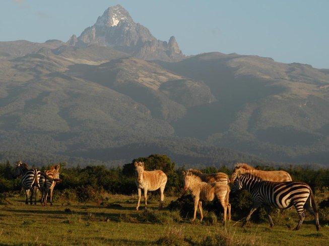 7 Days Guided Classic Kenya Safari
