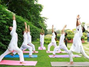 6 Day NaturOville Yogpeeth: Yoga and Meditation Retreat in Rishikesh