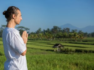 10 Days Whittle Away Weight Detox Retreat in Bali