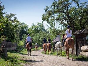 8 Days 5-Star Horse Riding Holiday in Transylvania, Romania