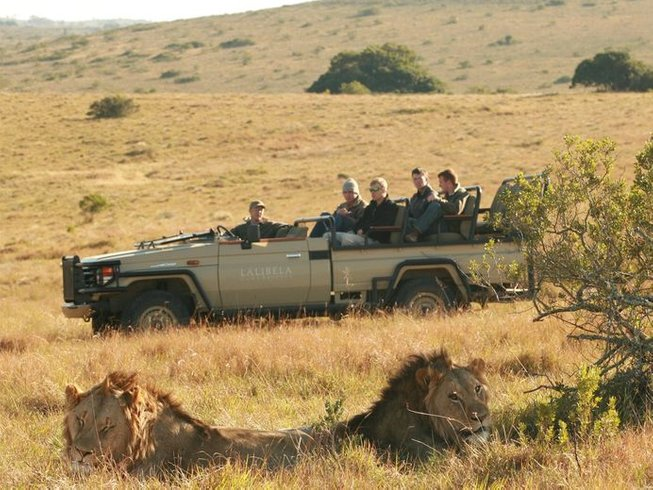 4 Days Wildlife Safari South Africa