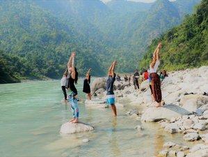 8 jours-50 heures de formation de professeur de yoga certifiée Yoga Alliance à Rishikesh, Inde