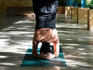 13 Day Yoga Retreat in Kandy, Central Province