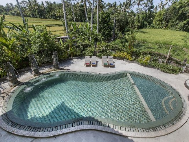 5 Days Kick Start to Wellness, Detox, and Yoga Retreat in Bali, Indonesia