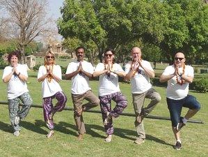12 Day 100-Hour Hatha, Ashtanga, and Vinyasa Yoga Teacher Training in Goa