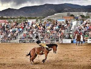 7 Day Rodeo and Ranch Vacation in Edgewood, New Mexico
