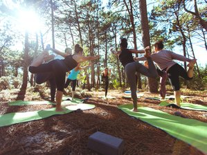 8 Days Reviving Surf and Yoga Retreat in Centro Region, Portugal