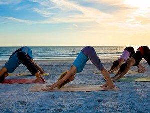 8 días retiro de yoga en Kerala, India