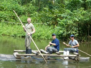 4 Day Amazon Experience Wildlife Tour in Manu National Park, Loreto