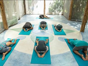 6 Days Artistic Yoga, Prana Meditation, Community Immersion in Tulum, Mexico