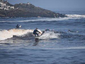 7 Days Surf Road Trip in Peru