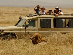6 Days Join Group Tarangire, Serengeti and Ngorongoro Safari in Tanzania