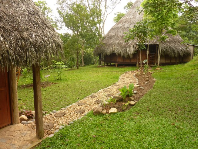 4 Days Reiki Level 1 Initiation & Yoga Retreat in Tarapoto, Peru