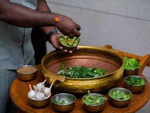 8 Day Wholesome Detox Retreat in Mehsana, Gujarat