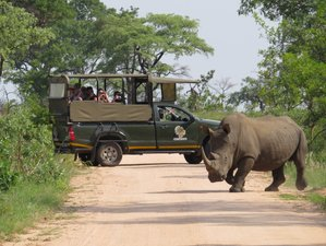 3 Days Famous Kruger Park Budget Safari in South Africa
