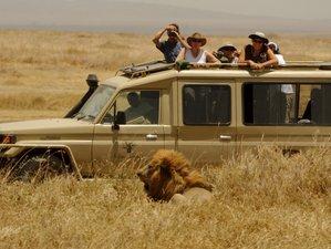 8 Days Classic Safari in Tarangire, Lake Manyara, Serengeti and Ngorongoro Crater, Tanzania