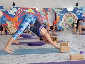 5 Days Winter Warmer Yoga Holiday in Cadiz, Spain