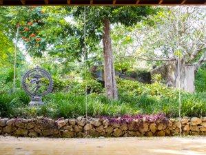 3 días de retiro de meditación, naturaleza y yoga en Yucatán, México