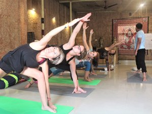 28 días 200 horas profesorado de yoga en Rishikesh, India