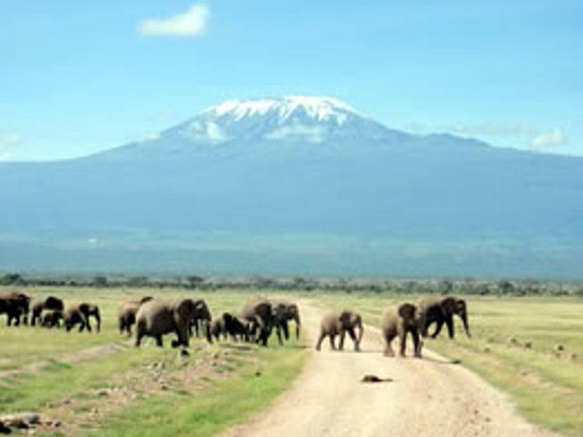 3 Days Affordable Guided Safari in Kenya