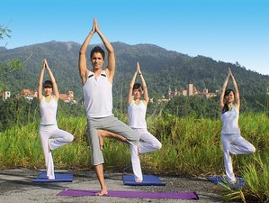 6 Days Stress Relief Yoga Retreat in Malaysia