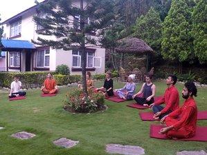 4 Days Reiki First Degree Training and Yoga Retreat in Kathmandu, Nepal