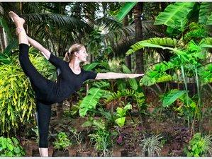 5 Day Ayurveda, Meditation and Yoga Retreat in Kerala