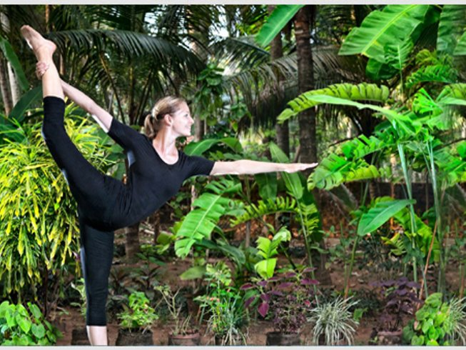 5 Days Ayurveda, Meditation and Yoga Retreat in Kerala