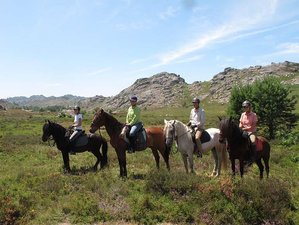 8 Days Wolf and Wild Horse Territory Horse Riding Holiday in Gerês, Portugal