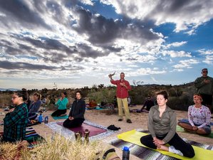 5 Days California Yoga Retreat and Nature Immersion