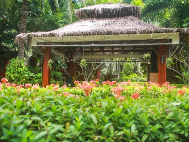 10 Days Relax, Recharge, and Renew Detox Yoga Retreat in Thailand