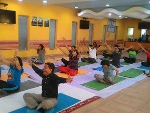 7 Days Traditional Yoga Retreat in Rishikesh