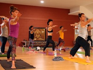 28 Days 200 Hours Residential Ashtanga Yoga Teacher Training in Mysore, India