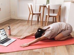 30 Day 200-Hour Online Multi-Style Yoga Teacher Training Course with Akhilesh Bodhi