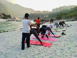7 Days Hatha Yoga with Pranayama and Healthy Yogic Meals in Rishikesh, India