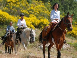 8 Day Intriguing Horse Riding Holiday Tuscany, Province of Grosseto