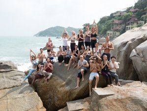 300-Hour Advanced Vikasa Yoga Academy Teacher Training in Koh Samui ... 70c11ff25
